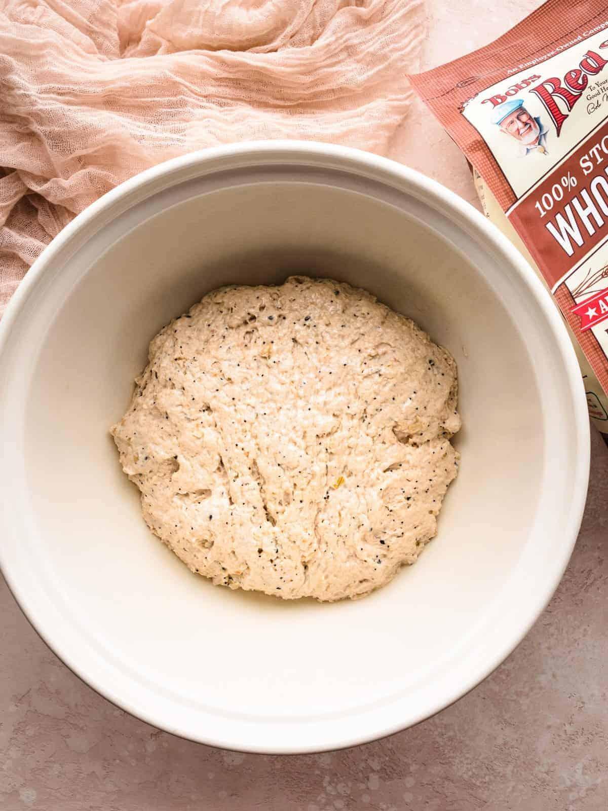 no knead whole wheat bread step 1