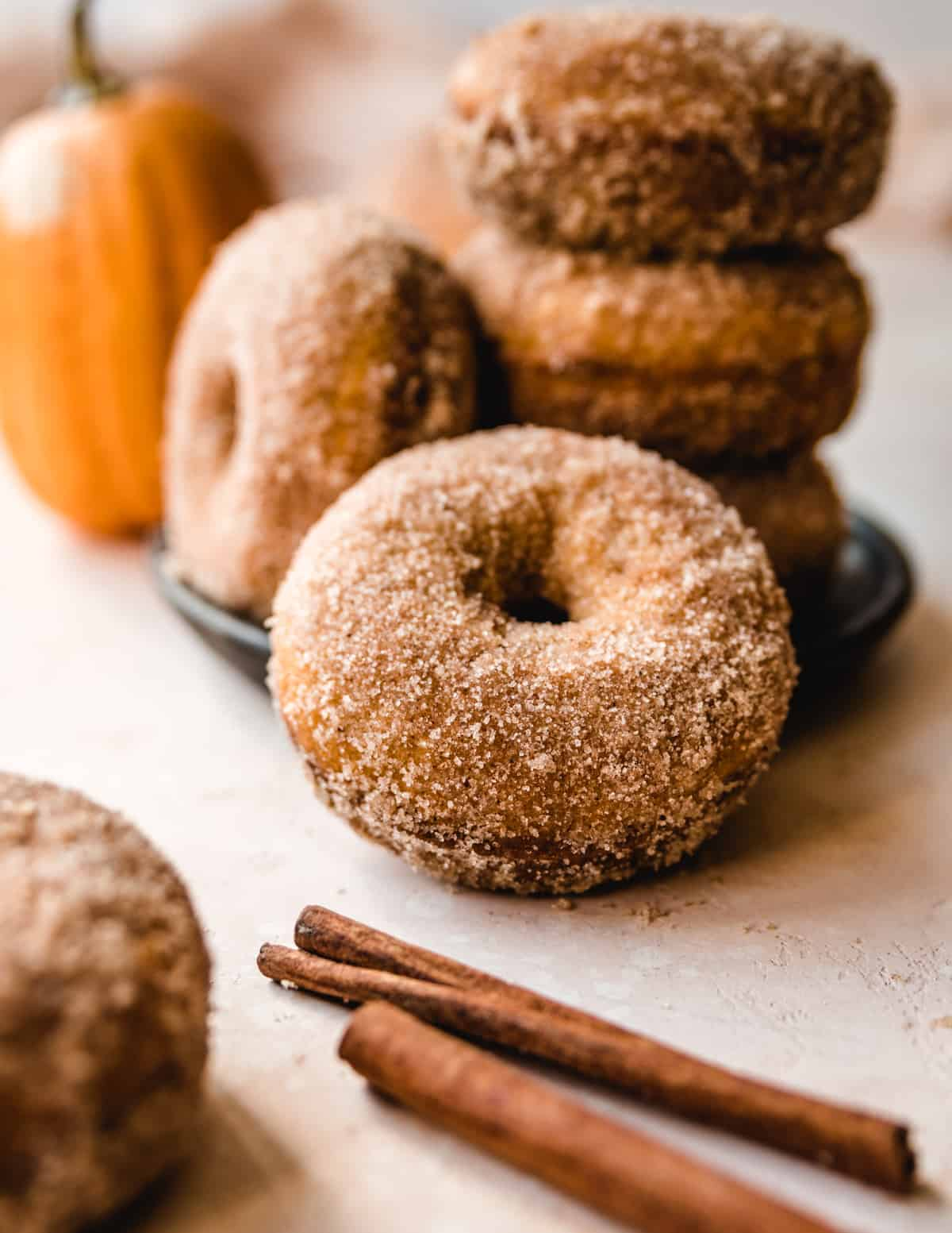 The sweet cinnamon sugar coating on these pumpkin donuts provides just the right touch of crunchy and sweet.